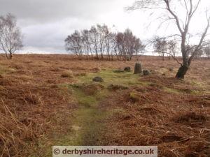 stoke flat stone circle